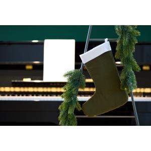 KraftKids Weihnachtssocke Doppelkrepp Grün Herbstgrün Weihnachtsstrumpf